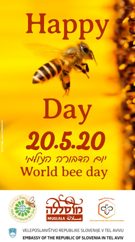 יום הדבורה העולמי world bee day