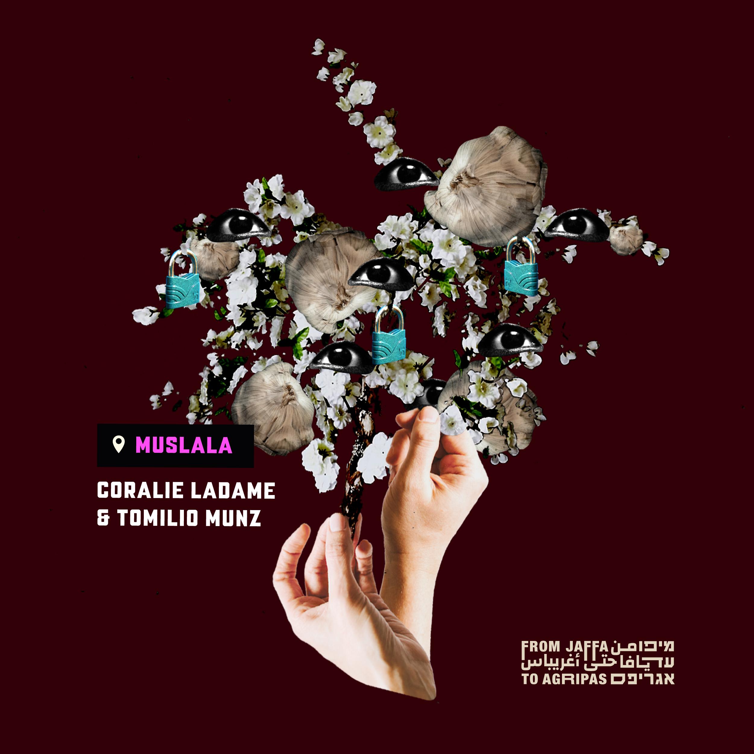 הליכה לילית - קורלי לדאם ותומיליו מינץ ● Coralie Ladame & Tomili