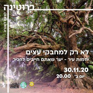 לא רק למחבקי עצים - יוזמות עיר-יער שאתם חייבים להכיר