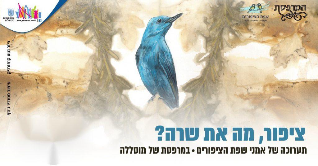 ציפור מה את שרה? אירועי חנוכה וסיורים בתערוכת שפת הציפורים אירוע מקוון